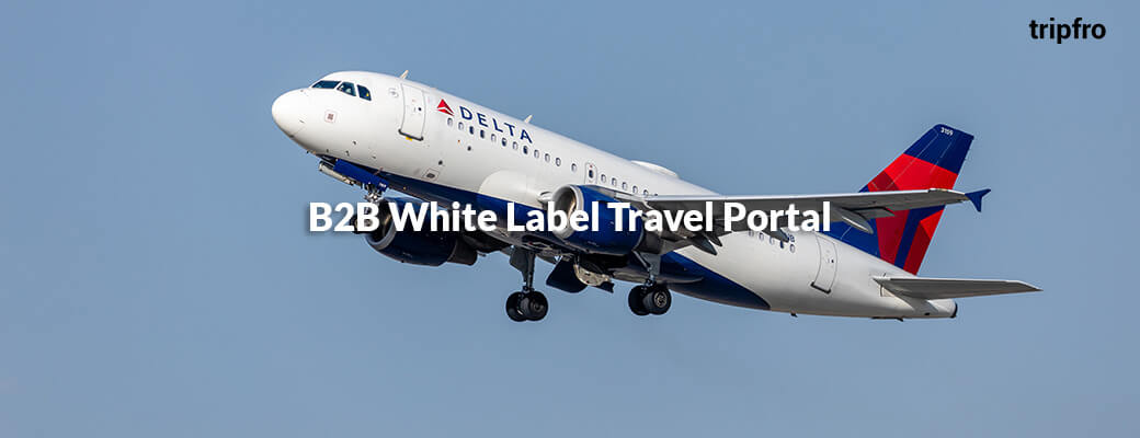 b2b-travel-agent